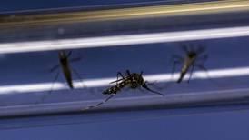 Dengue fever rates plummet in groundbreaking mosquito trial