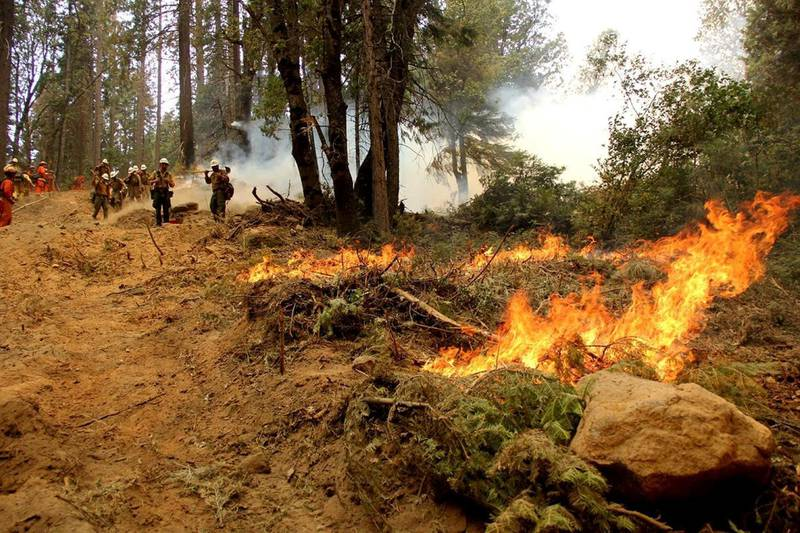 Firefighters battle the Ferguson Fire, the largest fire in the Sierra National Forest's history, in this U.S. Forest Service photo released on social media, in California, U.S., August 8, 2018.    Courtesy US Forest Service/Handout via REUTERS  ATTENTION EDITORS - THIS IMAGE HAS BEEN SUPPLIED BY A THIRD PARTY.
