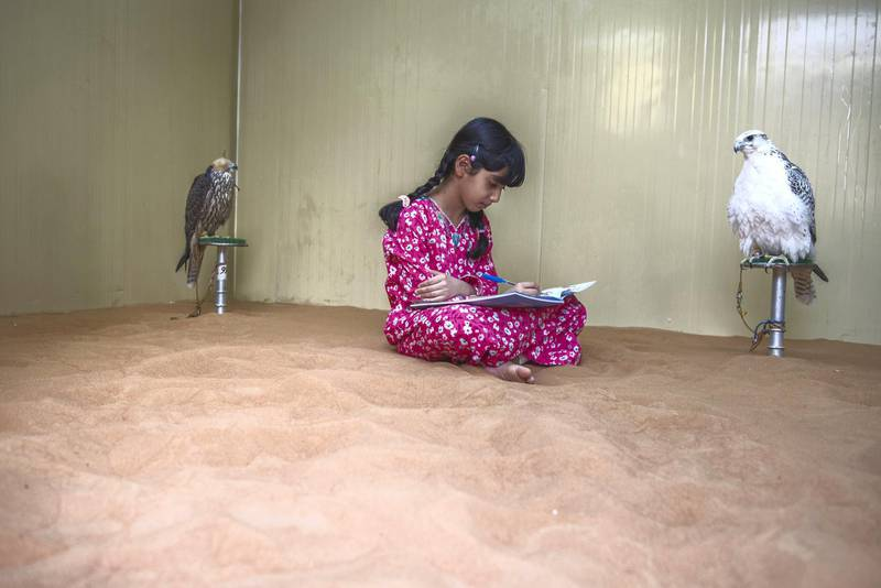 Osha doing her school work at falcons area at her home when she is not busy honing her skills in the art of falconry at Al Watbha, Abu Dhabi,UAE , Vidhyaa Chandramohan for The National
