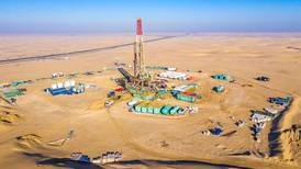 Jebel Ali gas reservoir discovery the 'largest in 15 years'