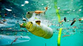 Why the plastic water bottle is public enemy number one