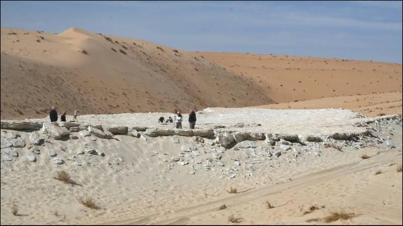 120,000 year old footprints in Saudi, by James Langton