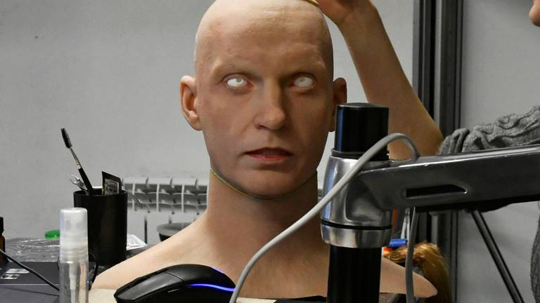 An image that illustrates this article Lifelike humanoid robot could replace receptionists