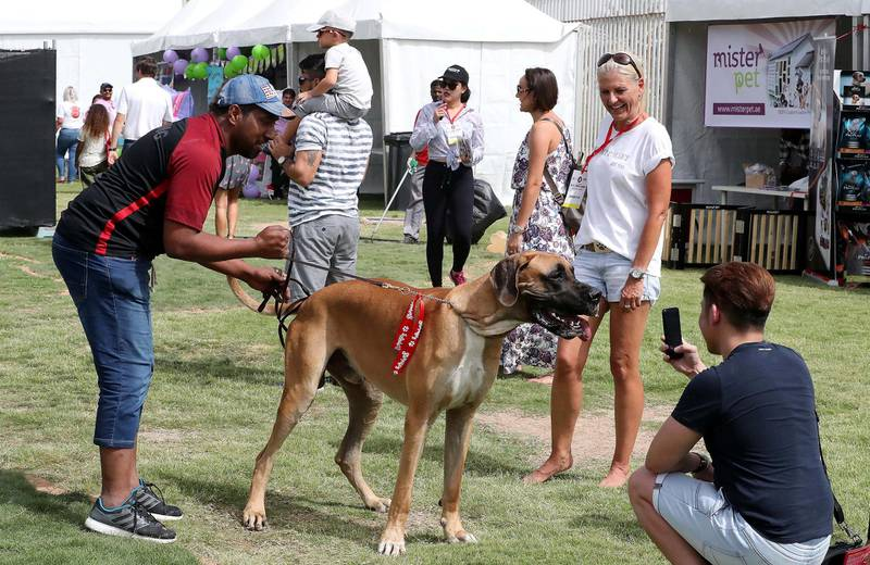 ABU DHABI , UNITED ARAB EMIRATES , APRIL 13   – 2018 :- People taking photos of pets during the pet festival held at DU arena on Yas Island in Abu Dhabi. ( Pawan Singh / The National ) For News