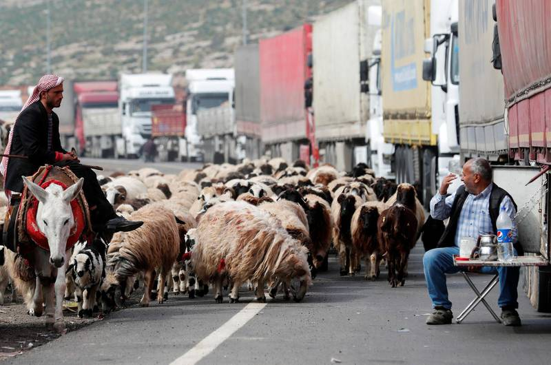 A truck driver talks to the shepherd at the Cilvegozu border gate, located opposite to the Syrian commercial crossing point Bab al-Hawa, in Reyhanli, Hatay province, Turkey, February 28, 2020. REUTERS/Murad Sezer