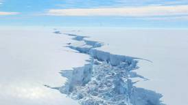 Temperature of northern tip of Antarctica reaches 18°C record high
