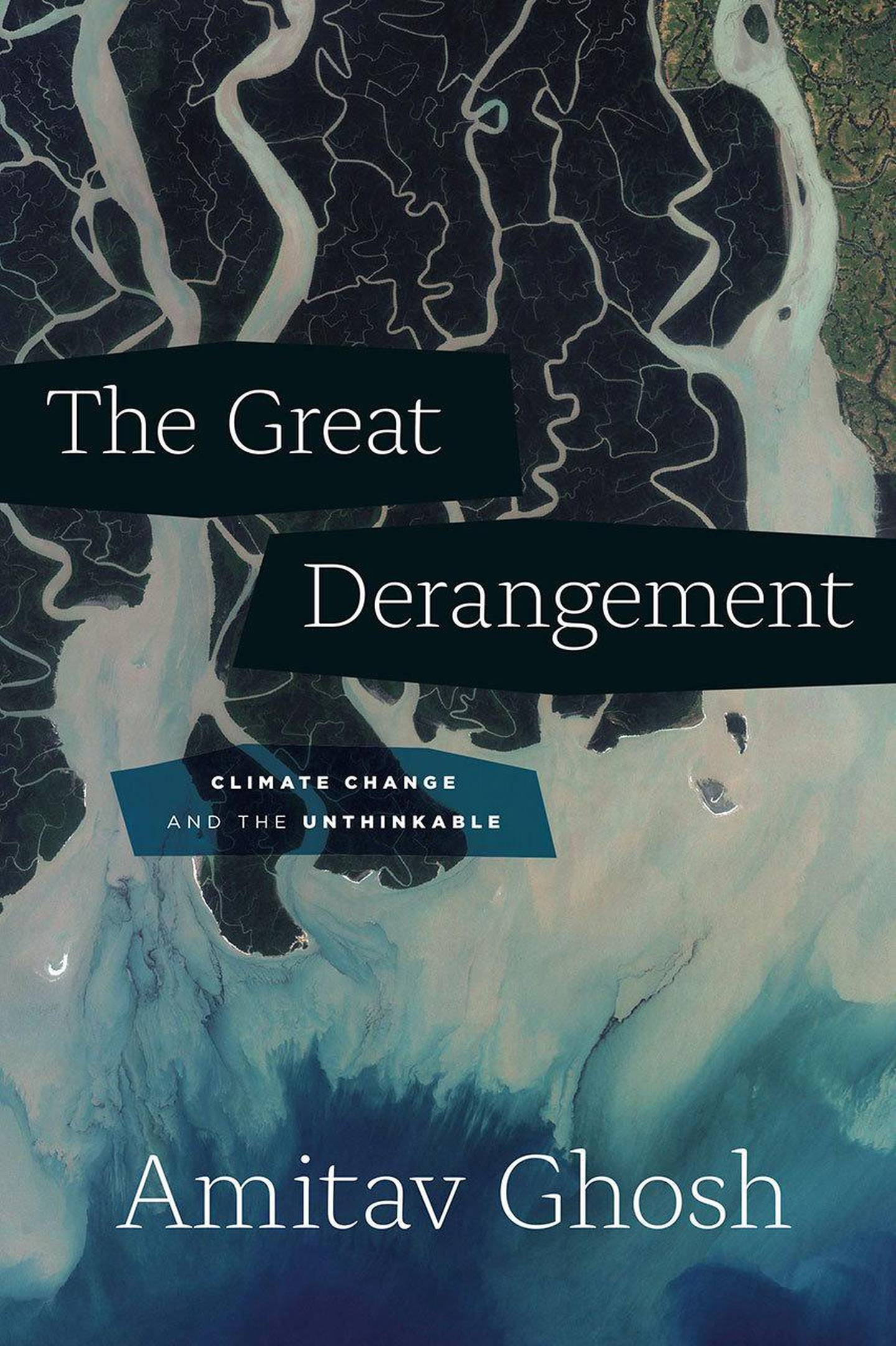 The Great Derangement: Climate Change and the Unthinkable by Amitav Ghosh. Courtesy University of Chicago Press