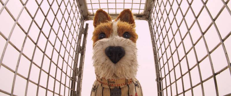 """Bill Murray as """"Boss"""" in the film ISLE OF DOGS. Photo Courtesy of Fox Searchlight Pictures. © 2018 Twentieth Century Fox Film Corporation All Rights Reserved"""