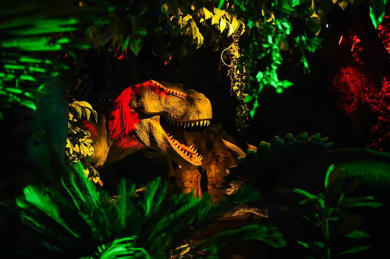 CHENGDOU,CHINA - DECEMBER 28 : Dinosaur models are being displayed on December 28, 2017 in Chengdu, China. There are ten dinosaur models at the first indoor dinosaur theme park Jurassic Park in Chinas Chengdu. It can be used to identify dinosaurs by means of technology whether dinosaurs are carnivorous or herbivorous and it is designed sixteen scenes, each scene has related stories.  (Photo by Stringer/Anadolu Agency/Getty Images)
