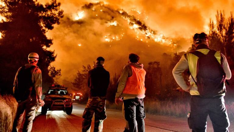 An image that illustrates this article 'Summer wildfires emit record amount of CO2'