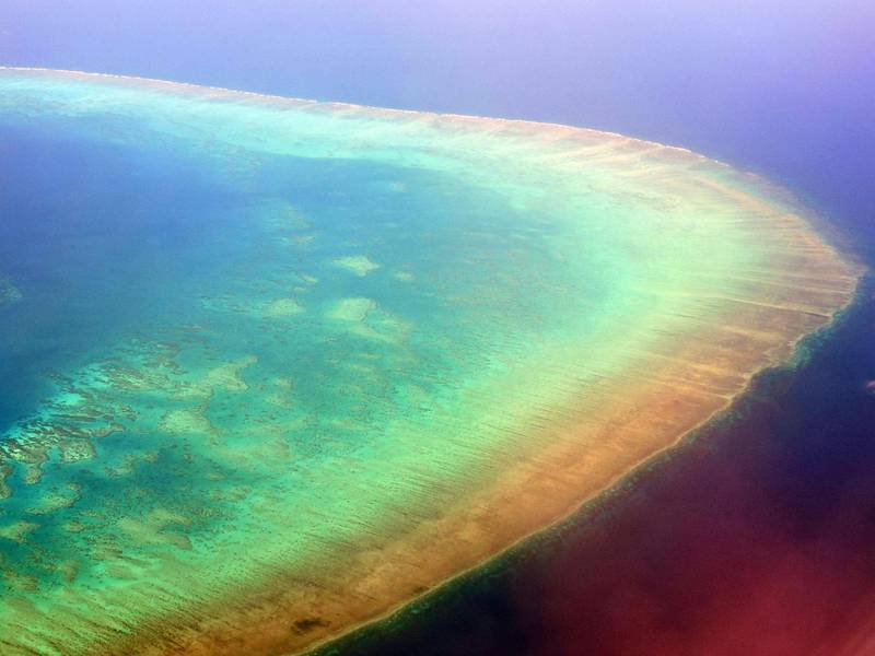 Aerial photo in September 2017 of a portion of the Great Barrier Reef off the coast of Cairns, Queensland, Australia.  Parts of the reef have been subjected to a bleaching event which can damage the coral.  Above-average sea water temperatures caused by global warming have been identified as a leading cause for coral bleaching worldwide.  Between 2014 and 2016, the longest global bleaching events ever were recorded.  In 2016, bleaching of coral on the Great Barrier Reef killed between 29 and 50 percent of the reef's coral.
