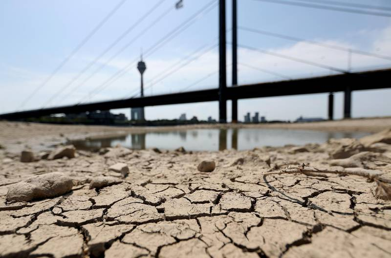 epa07742204 A temporarily dried river bed of the Rhine river in Duesseldorf, Germany, 26 July 2019. The water levels in the rivers are falling sharply. Germany experiences a heat wave with temperatures up to 42 degrees Celsius.  EPA/FRIEDEMANN VOGEL