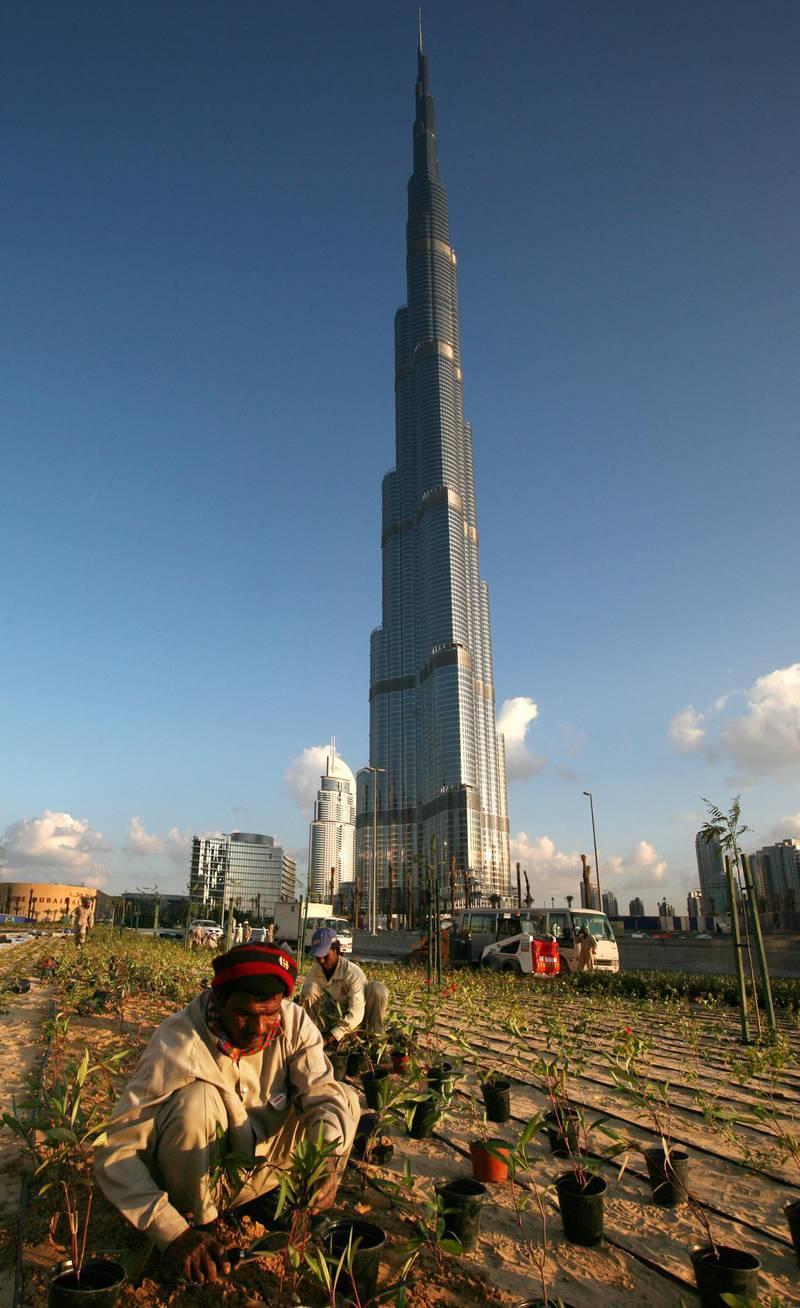 DUBAI - JANUARY 3,2010 - A worker planting  ornaments around the Burj Dubai in preparation for the opening ceremony of the tallest building in Dubai. ( Paulo Vecina/The National ) *** Local Caption ***  PV Burj 2.jpg PV Burj 2x.jpg