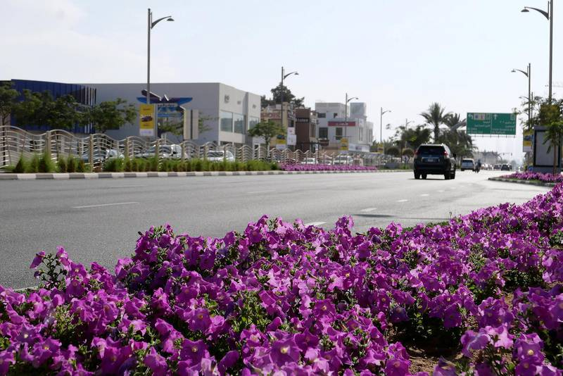 DUBAI, UNITED ARAB EMIRATES , Feb 08 – View of the Jumeirah beach road in Umm Suqeim area in Dubai. (Pawan Singh / The National) For News/Stock/Online/Instagram. Story by Georgia