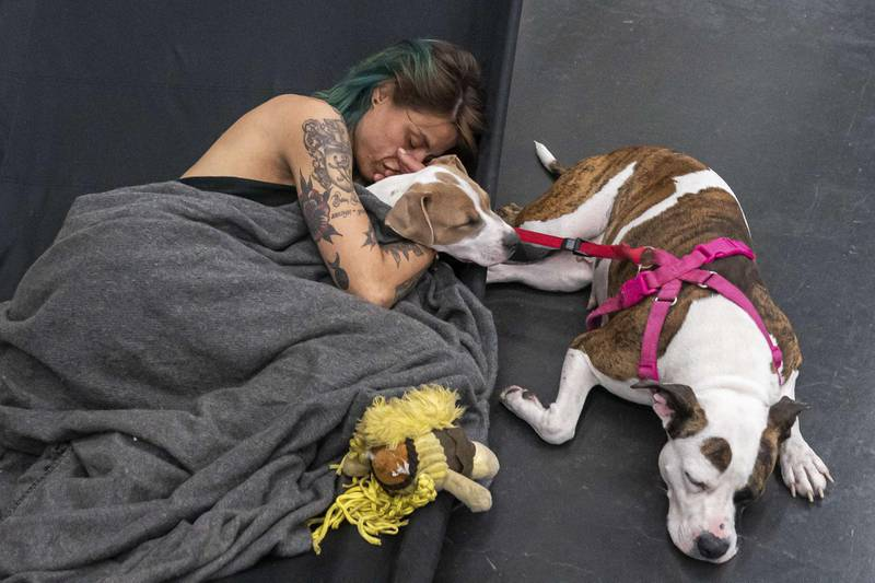 PORTLAND, OR - JUNE 27: Austun Wilde rests with her two dogs, Bird Is The Wurd and Fenrir at a cooling center in the Oregon Convention Center on June 27, 2021 in Portland, Oregon. Record breaking temperatures lingered over the Northwest during a historic heatwave this weekend.   Nathan Howard/Getty Images/AFP == FOR NEWSPAPERS, INTERNET, TELCOS & TELEVISION USE ONLY ==