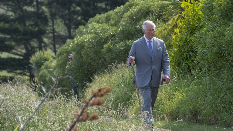 An image that illustrates this article How Cop26 will test Prince Charles's commitment to the planet