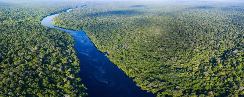 Amazon river in Brazil. Getty Images
