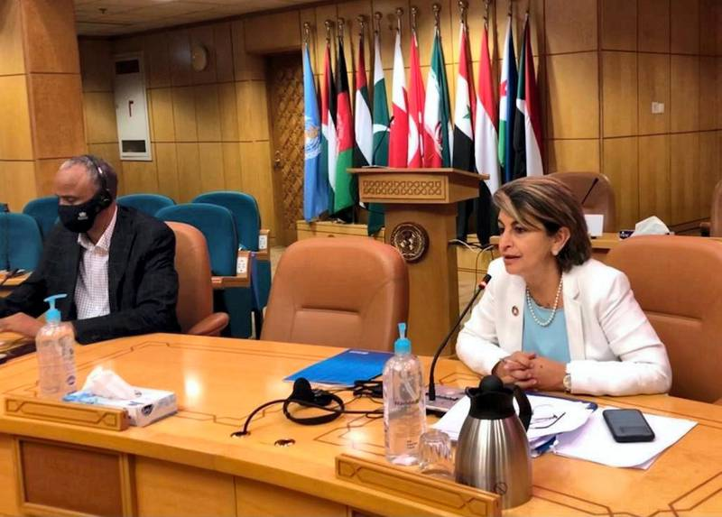 Dr Rana Hajjeh, director of programmes management at WHO in the Eastern Mediterranean Region (EMRO)Left: Dr Abdinasir Abubakar, team lead, infectious hazards management at WHO in the Eastern Mediterranean Region (EMRO). courtesy of WHO EMRO