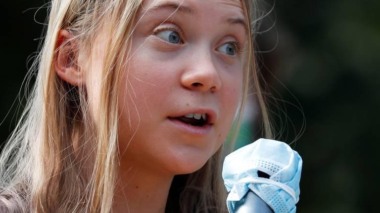 An image that illustrates this article Environmental Rickroll: Greta Thunberg sings Rick Astley hit at climate concert