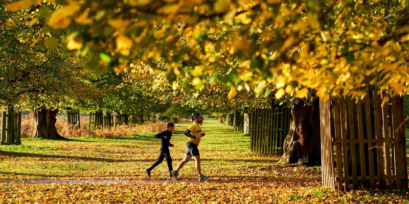 Runners in Bushy Park, London. (Photo by John Walton/PA Images via Getty Images)