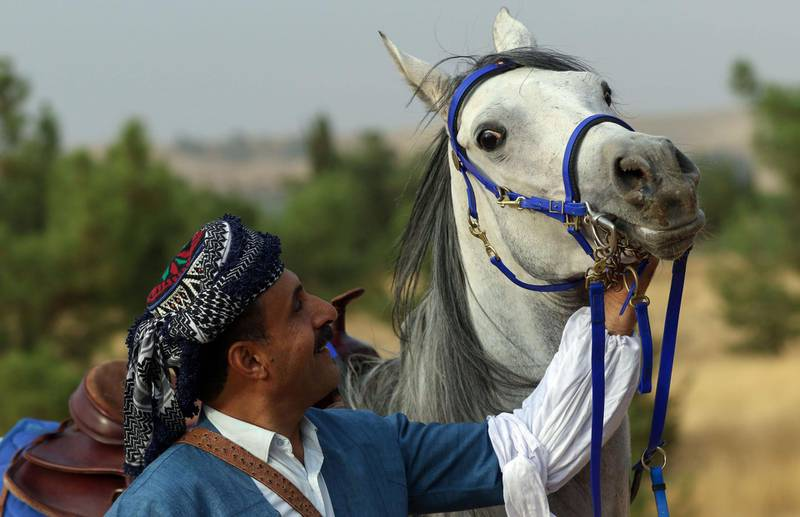 An Iraqi Kurdish man looks at his horse during the annual Autumn cultural festival in Arbil, the capital of the autonomous Kurdish region of northern Iraq, on November 5, 2020. / AFP / SAFIN HAMED