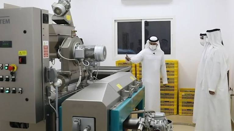 An image that illustrates this article Ras Al Khaimah Ruler inspects olive oil production on Jebel Jais