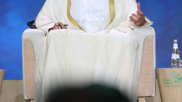An image that illustrates this article UAE stresses significance of 'landmark' Saudi net-zero commitment