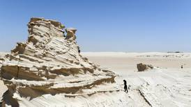 Patrols to protect Abu Dhabi's fossil dunes were needed