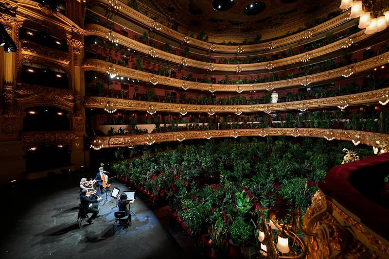 -- AFP PICTURES OF THE YEAR 2020 --  The Uceli Quartet perform for an audience made of plants during a concert created by Spanish artist Eugenio Ampudia and that will be later streamed to mark the reopening of the Liceu Grand Theatre in Barcelona on June 22, 2020 following a national lockdown to stop the spread of the novel coronavirus. (Photo by LLUIS GENE / AFP)