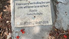 Cairo's only known pet cemetery is a symbol of love and remembrance