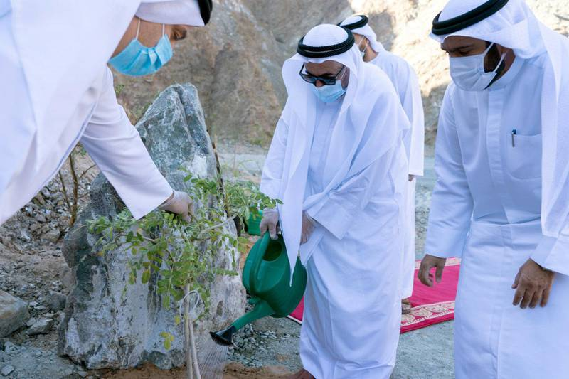 Dr. Sheikh Sultan bin Muhammad Al Qasimi, Supreme Council Member and Ruler of Sharjah, launched Thursday morning, a qualitative environmental initiative represented in planting a number of mountains located on Sharjah-Khorfakkan Road with several kinds of long-living trees that are commensurate with the prevailing nature of that region. Wam