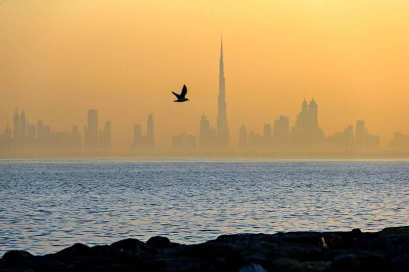 DUBAI, UAE. March 7, 2014- A bird soars across a misty Dubai skyline during sunrise, March 7, 2014. (Photo by: Sarah Dea/The National, Story by: STANDALONE, FOCAL POINT)  *** Local Caption *** bz28de-DPS-pictures2014-14.JPG