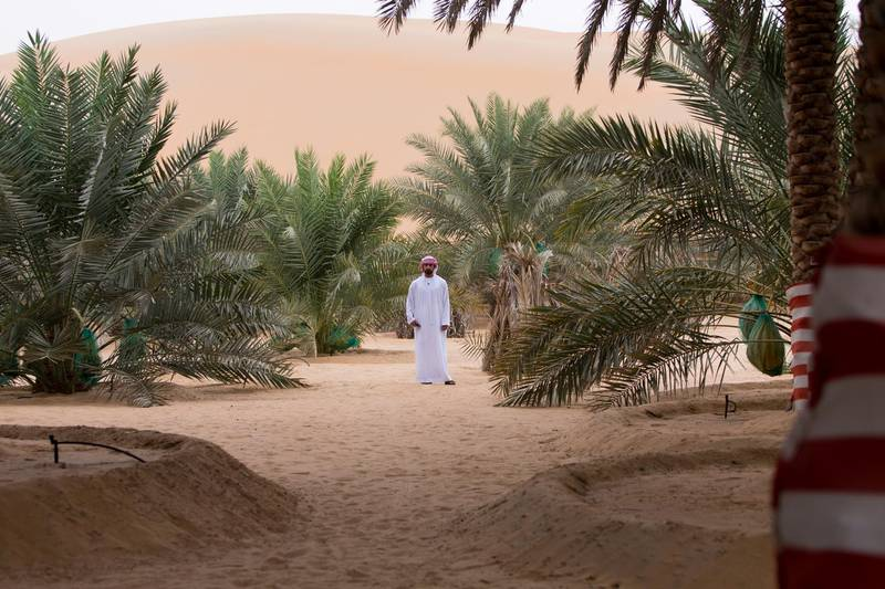 Liwa, United Arab Emirates, July 20, 2017:    Rashed Abdullah, winner of the largest date branch for the Liwa Date Festival at his farm in the Al Dhafra Region of Abu Dhabi on July 20, 2017. The festival runs from July 19th to 29th. The winning branch weighed in at 106.5kg. Christopher Pike / The NationalReporter: Anna ZachariasSection: News
