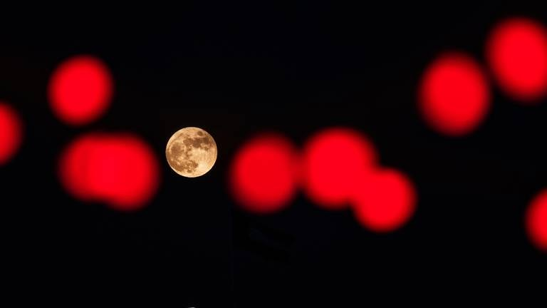 An image that illustrates this article Hunter's Moon around the world - in pictures