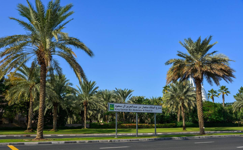 RABCXN Dubai, UAE - Dec 9, 2018. King Salman Bin Abdulaziz Al Saud Street with palm trees in Dubai.