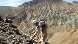 Ten workers from mine-clearing NGO shot dead in Afghanistan