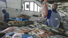As UAE heat subsides and fish prices fall UAE traders gear up for increased work
