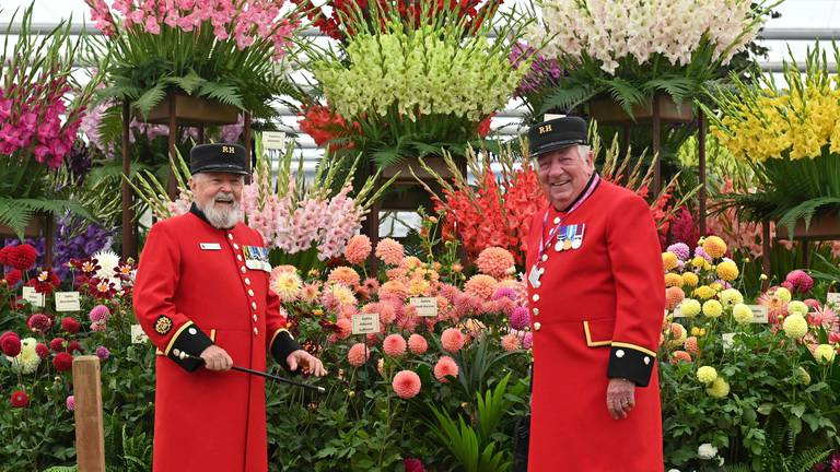 An image that illustrates this article Chelsea Flower Show opens in autumn for first time