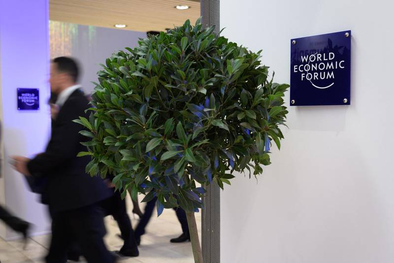 A tree installed as decoration is seen inside the Congress center, during the World Economic Forum (WEF) annual meeting in Davos, on January 21, 2020.    It's a green policy that everyone can get behind. In Davos this year, leaders and tycoons, including the world's leading climate sceptic Donald Trump, offered to plant trees to help the planet. / AFP / Fabrice COFFRINI