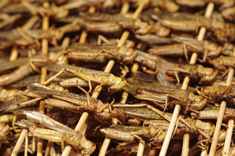 Crickets on skewers for sale at the Donghuamen Night Market, near Wangfujing Avenue in Beijing. Getty Images