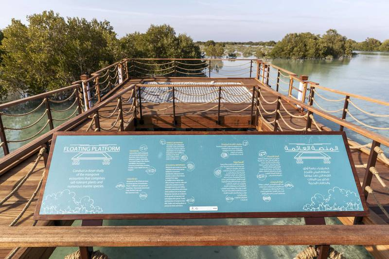 ABU DHABI, UNITED ARAB EMIRATES. 30 JANUARY 2020. The newly launched Mangrove Walk at Al Jubail Islandi. A special floating platform that allows visitors to observe the mangrove water and life without interference. (Photo: Antonie Robertson/The National) Journalist: Janice Rodrigues. Section: National.