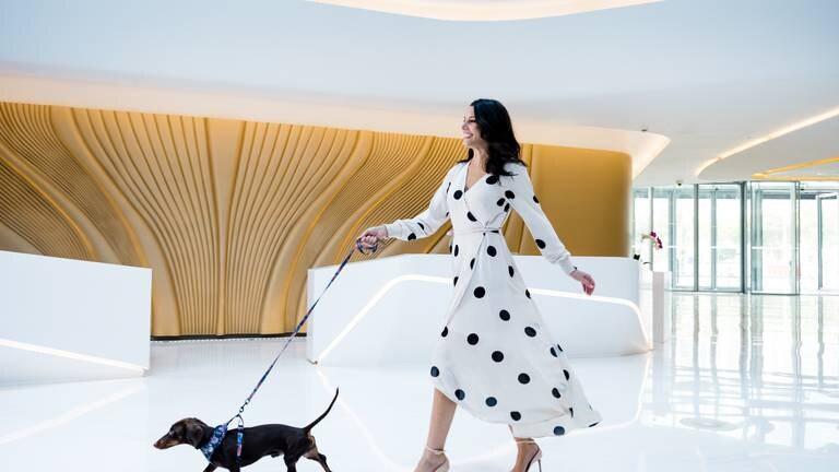 An image that illustrates this article Creature comforts: Dog-friendly hotels in Dubai, RAK and Abu Dhabi