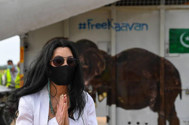 US pop singer Cher gestures in front of the crate of Kaavan the Asian elephant upon his arrival in Cambodia from Pakistan at Siem Reap International Airport in Siem Reap on November 30, 2020.  / AFP / TANG CHHIN Sothy