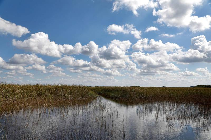 """(FILES) In this file photo taken on February 7, 2017, clouds are reflected in the Florida Everglades, otherwise known as the river of grass, on Miccosukee Tribal land adjacent to Florida Everglades National Park, Florida. - Climate change has become the biggest threat to UN-listed natural world heritage sites like glaciers and wetlands, and has pushed Australia's Great Barrier Reef into """"critical"""" condition, conservationists said December 2, 2020. Protected areas in the Everglades National Park in the United States are also among the sites now deemed in critical condition. (Photo by RHONA WISE / AFP)"""