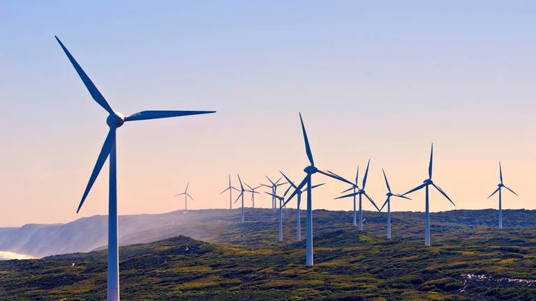 An image that illustrates this article EU urged to deepen green investments in the Gulf