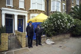 UK police continue to question suspect over fatal stabbing of Tory MP
