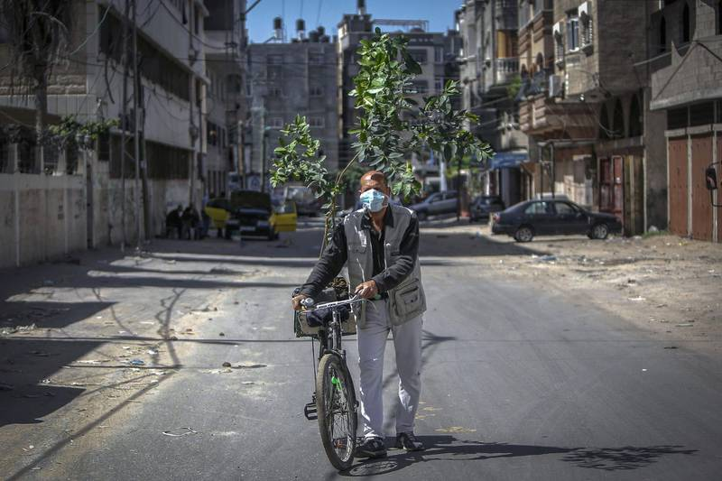 TOPSHOT - A Palestinian man wearing a protective mask due to the COVID-19 pandemic transports a tree sapling on his bicycle in Gaza city, on April 6, 2020. / AFP / MOHAMMED ABED