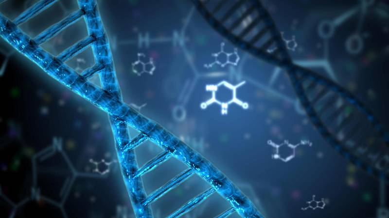 J3J4K8 dna helix genetic science research