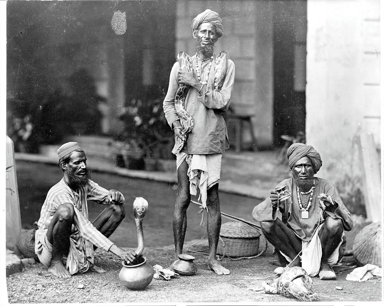 Group of snake charmers, 1890 (Library of Congress) photo_credit Nicolas Zubrzycki