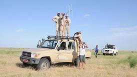 Oryx return to Chad thanks to UAE breeding programme